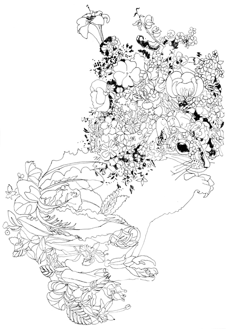 Pippa Rossi Pippas Magical Garden Coloring